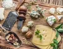 Różni typ sery z dokrętkami i ziele Obrazy Stock