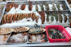 Różni typ wykładający na lodzie owoce morza Zdjęcie Stock