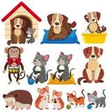 Różni typ zwierzęta domowe na białym tle ilustracja wektor