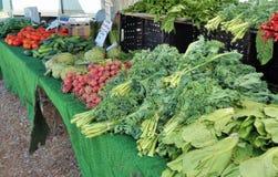 Różni warzywa na pokazie przy rolnika rynkiem zdjęcia stock