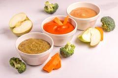 Różnica pureed dziecka jedzenie w glinianych pucharach z składnikami obraz stock
