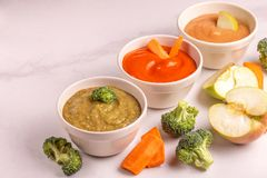 Różnica pureed dziecka jedzenie w glinianych pucharach z składnikami zdjęcie royalty free