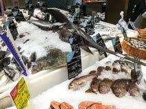 Różnorodna ryba Dla sprzedaży W Rybiego rynku sklepie Zdjęcie Stock