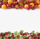 Różnorodne świeże lato jagody Fotografia Stock