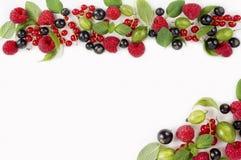 Różnorodne świeże lato jagody na białym backgroundri Zdjęcie Royalty Free