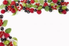Różnorodne świeże lato jagody na białym tle Obrazy Stock