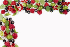 Różnorodne świeże lato jagody na białym tle Obrazy Royalty Free