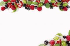 Różnorodne świeże lato jagody na białym tle Obraz Stock