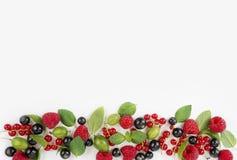 Różnorodne świeże lato jagody na białym tle Fotografia Stock
