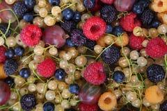 Różnorodne dojrzałe jagody na stole Obraz Royalty Free