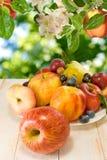 Różnorodne dojrzałe owoc na talerzu Zdjęcia Stock