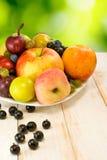 Różnorodne dojrzałe owoc na talerzu Fotografia Stock