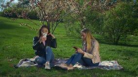 Różnorodne dziewczyny wydaje czas wolnego w wiosna parku zbiory wideo