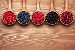 Różnorodne dzikie jagody w małych drewnianych miarkach Zdjęcie Royalty Free