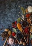 Różnorodne indyjskie pikantność, dokrętki i ziele w, drewnianych łyżkach i metali pucharach obrazy stock