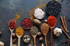 Różnorodne indyjskie pikantność w drewnianych łyżkach, metal dokrętki na zmroku kamienia stole i puchary i Kolorowe pikantność, o Fotografia Royalty Free