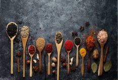 Różnorodne indyjskie pikantność w drewnianych łyżkach, ziele i dokrętkach, obraz royalty free