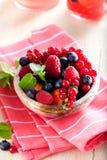 Różnorodne lato owoc w pucharze Asortowane świeże jagody z lea obraz stock