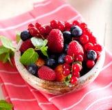 Różnorodne lato owoc w pucharze Asortowane świeże jagody z lea zdjęcia royalty free
