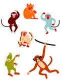 Różnorodne małpy Obrazy Stock