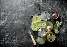 Różnorodne zamknięte blaszane puszki konserwować jedzenie na tnącej desce z pikantność, czosnkiem i Podpalanym liściem, zdjęcia stock