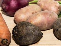 Różnorodni świezi surowi warzywa Fotografia Royalty Free