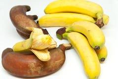 Różnorodni banana dziecka banany i czerwoni banany na białym tle Obrazy Royalty Free