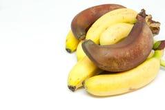 Różnorodni banana dziecka banany i czerwoni banany na białym tle Obraz Stock