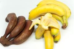 Różnorodni banana dziecka banany i czerwoni banany na białym tle Zdjęcie Royalty Free