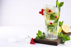 Różnorodni jagodowi lemoniady lub mojito koktajle, świeży lukrowy cytryny wapno, Czerwonego rodzynku natchnąca woda, lata detox z Fotografia Stock