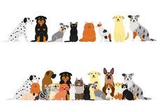 Różnorodni koty i psy graniczą set royalty ilustracja