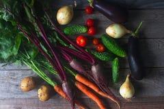 Różnorodni organicznie warzywa na nieociosanym drewnianym tle, zdrowy styl życia, jesieni żniwo, surowy jedzenie, odgórny widok Zdjęcia Stock