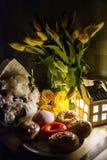 Różnorodni piękni donuts i kwiaty Zdjęcia Royalty Free