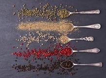 Różnorodni rodzaje peppercorns w srebnych łyżkach obraz stock