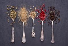 Różnorodni rodzaje peppercorns w srebnych łyżkach zdjęcia royalty free