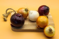 Różnorodność cebule na pomarańczowym tle zdjęcia stock