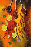 Różnorodność jaskrawe pikantność Pikantność W łyżkach Piękny jaskrawy tło pikantność na widok obraz stock