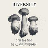 Różnorodność jest jeden rzeczą my wszystko w błoniu ilustracja wektor
