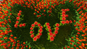 Różnorodność kwiaty w formie serca z słowo miłością Fotografia Royalty Free