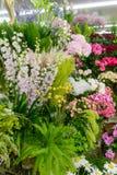 Różnorodność kwiaty w sklepie zdjęcia stock