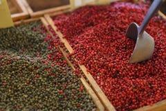 Różnorodność pikantność, seasonings, herbaty Zdjęcia Stock