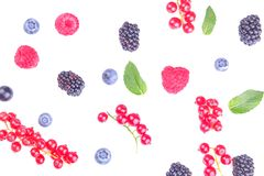Różnorodny świeży jagody zakończenie wliczając czarnych jagod, malinek, czernic i rodzynków na białym tle, odosobniony fotografia stock