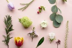 Różnorodny Świezi kwiaty na Różowym tle fotografia royalty free