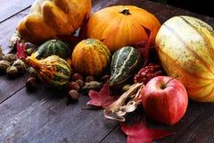Różnorodny asortyment banie na drewnianym tle Jesieni brzęczenia obraz royalty free