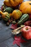Różnorodny asortyment banie na drewnianym tle Jesieni brzęczenia obrazy stock