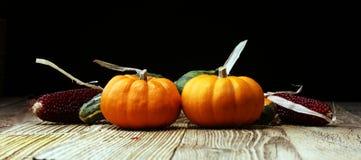 Różnorodny asortyment banie na drewnianym tle Jesieni brzęczenia zdjęcie royalty free