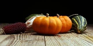 Różnorodny asortyment banie na drewnianym tle Jesieni brzęczenia zdjęcia royalty free