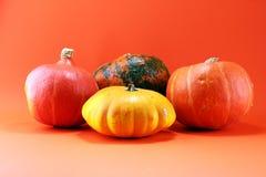 Różnorodny asortyment banie na pomarańczowym tle Jesieni harv obraz royalty free