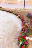 Różnorodny kwiat na ogrodowy łonowym Zdjęcia Royalty Free