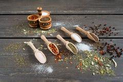 Różnorodny pikantność i w drewnianych łyżkach Mieszkanie nieatutowy pikantność składników chili, sól, himalajska sól, cząber i cz obrazy royalty free
